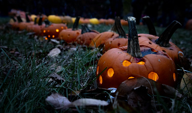 At Stoddard Ave. Pumpkin Glow