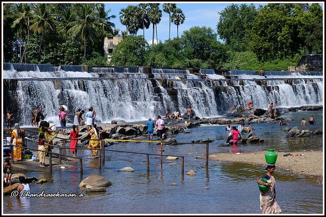 9310 - Kodiveri Dam on the River Bhavani
