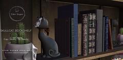 Skull Cat Bookshelf