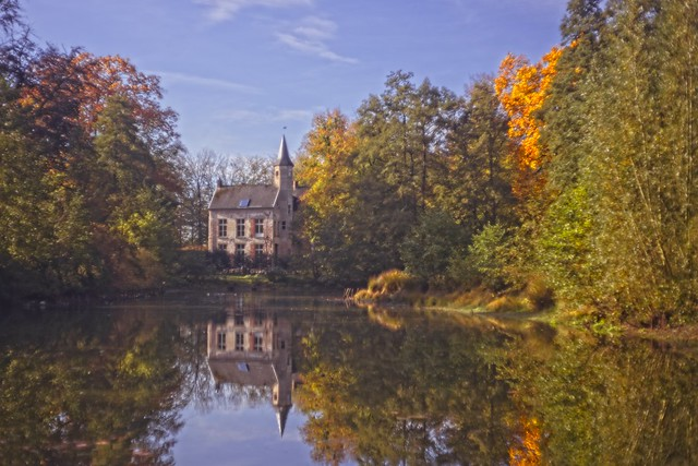The first autumn colors in Ryckevelde wood