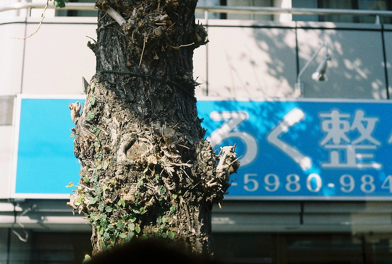 004Leitz Ⅲf+Summicron 50mm f2 0+Kodak Color Plus200浅草詣で浅草雷門行きバス内からの外の風景