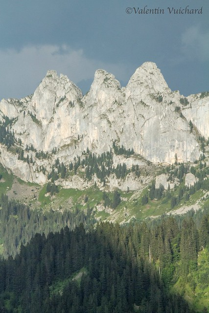 SF-_MG_2417 - View on the 3 peaks called the Virgins, Gruyère region - Switzerland