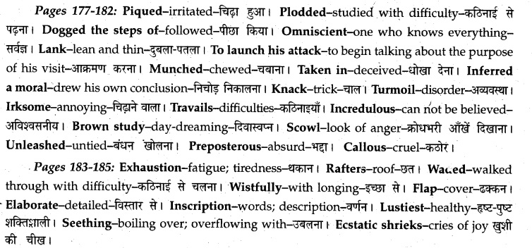 MP Board Class 12th English A Voyage Solutions Chapter 20 Swami and Friends (R.K. Narayan) 3