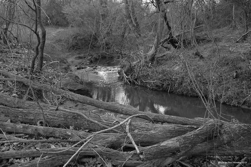monochrome creek landscape