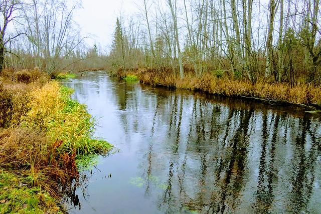 Põltsamaa jõgi / Põltsamaa river in Estonia