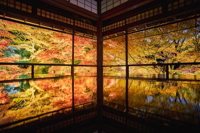 秋の瑠璃光院