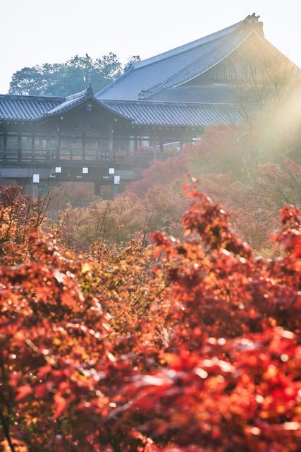 東福寺の通天橋と紅葉