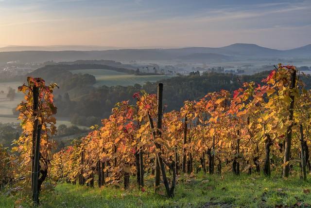 *Herbstmorgen in der Moseleifel*