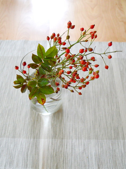Rose Hip Bouquet