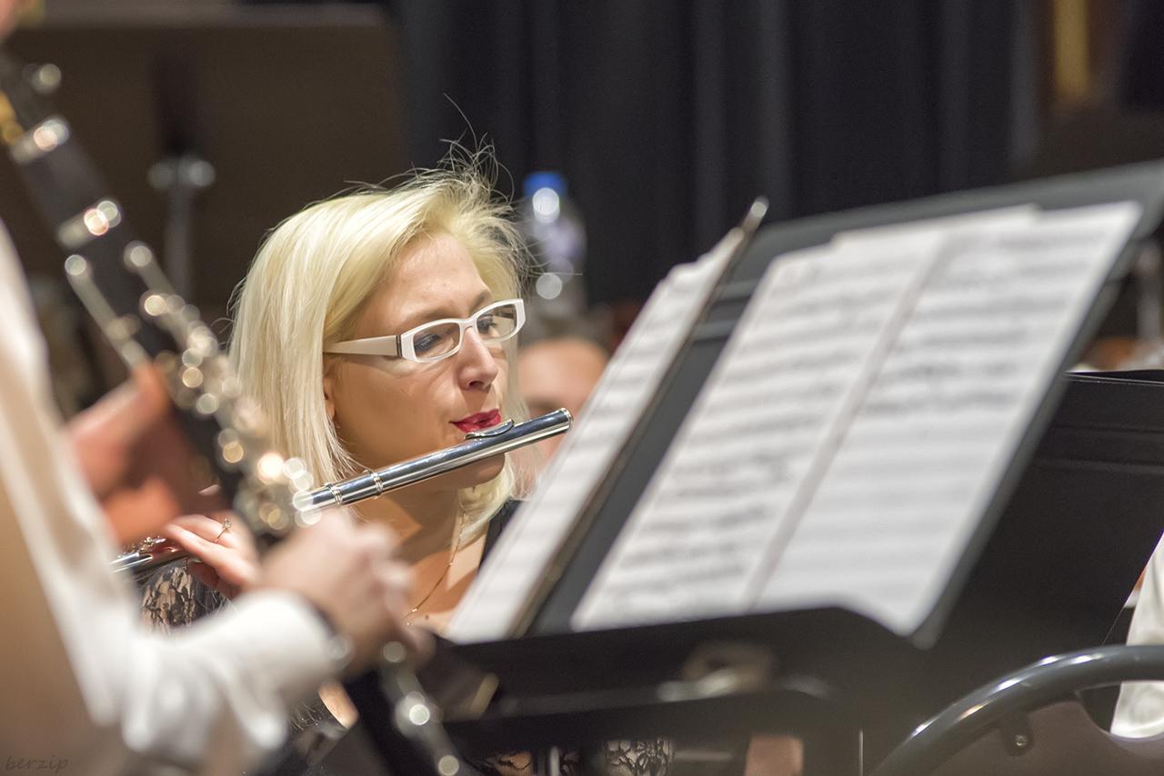 Concert d'automne de l'Orchestre d'Harmonie de Valenciennes 49001446207_a7cde4575c_o