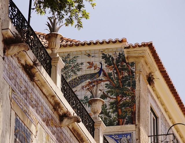Selva com pavão - Jungle with peacock - Lisbon
