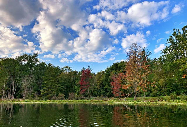 Reflecting on Fall #10