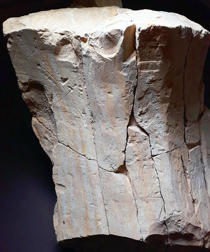 Co se skrývá pod podlahou. Archeologický výzkum Klementina, Galerie Klementinum, Praha, 12.9.-10.11.2019 (20191101)