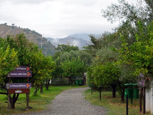 Alacantara Gorge