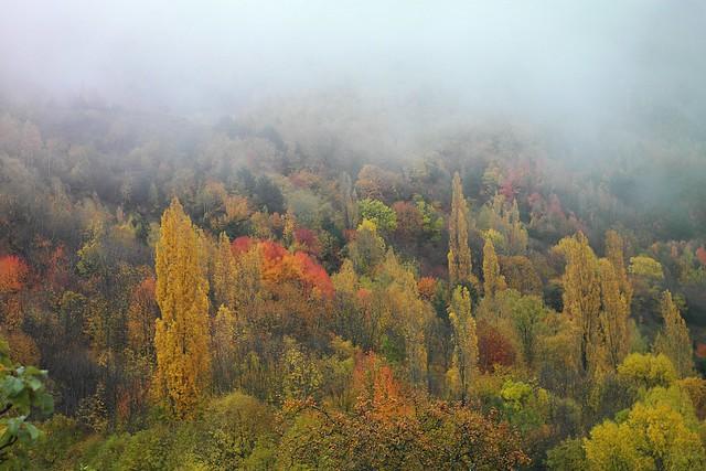 Otoño en Pirineo aragonés (Hoz de Jaca)