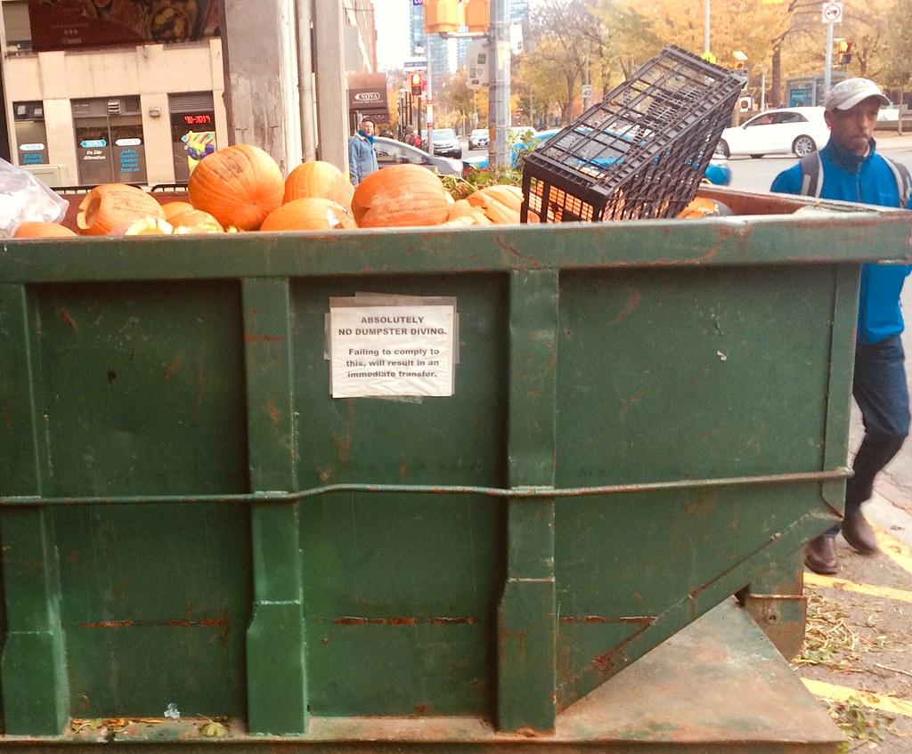 Where orange pumpkins go to die