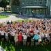 faculty 2019-2020 TIS