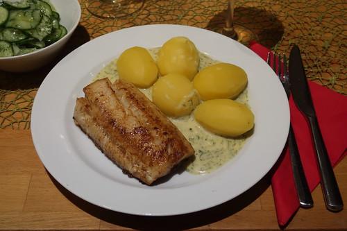 Auf der Haut gebratenes Zanderfilet zu Salzkartoffeln mit Senf-Dill-Soße (mein Teller)
