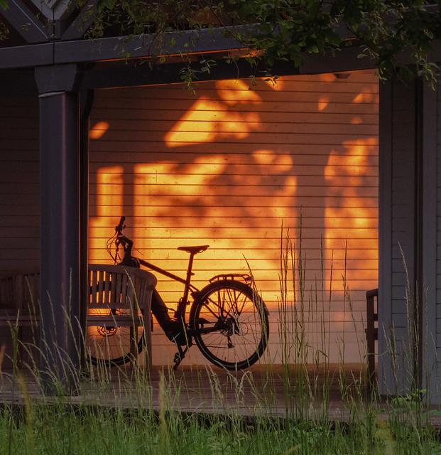 Sunset Bike