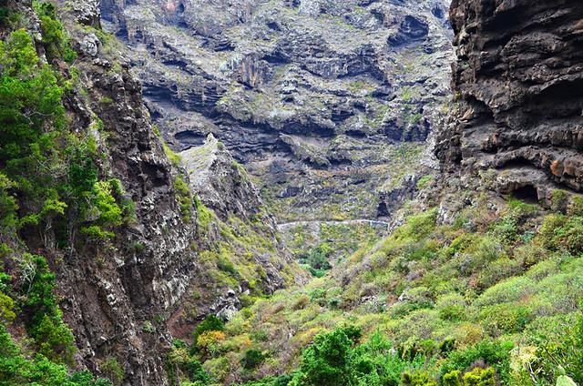 Barranco de Cuevas Negros, Tenerife