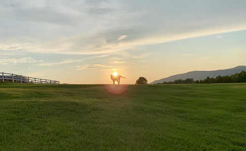 sunset horse theredhorseinn redhorse