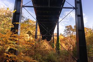 Autumn Sunlight Under Armstrong Bridge