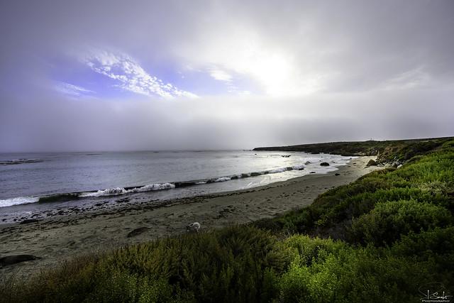 Elephant Seal Vista Point in San Simeon - California - USA