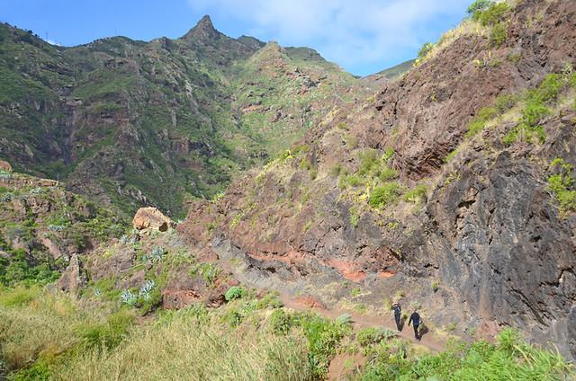 Afur Barranco, Tenerife