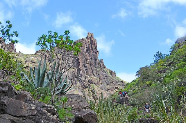 Masca Barranco, Tenerife