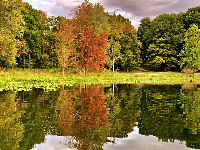 Reflecting on Fall #11