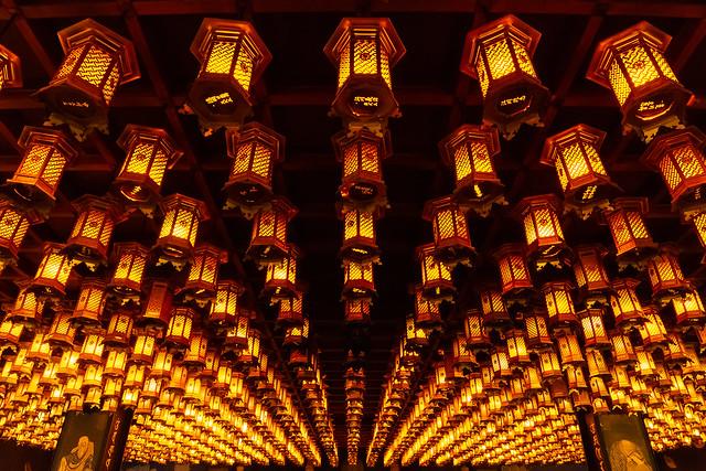 Sous la Pâle Lueur des Lanternes