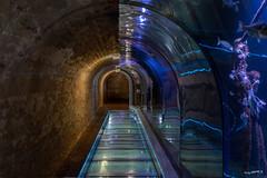zwei Tunnel