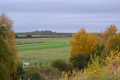 RAF Newmarket Heath (Rowley Mile)