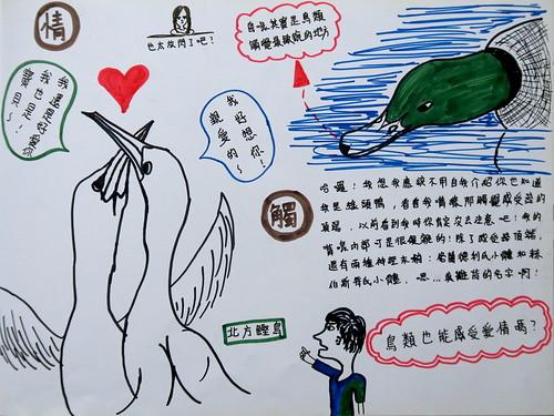 20190820-zozo畫鳥的感官2