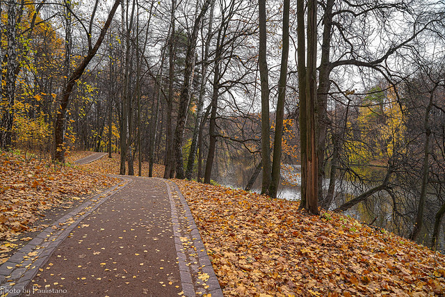 Late autumn... / Поздняя осень...