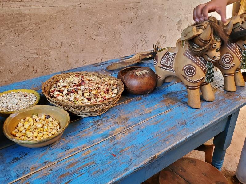 Pucara Bulls Peru