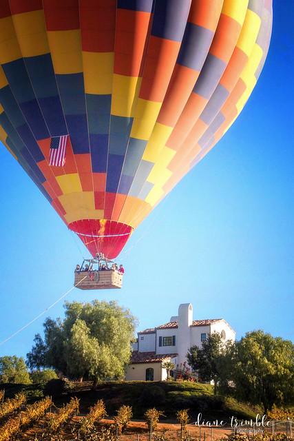 soaring on a sunday morning