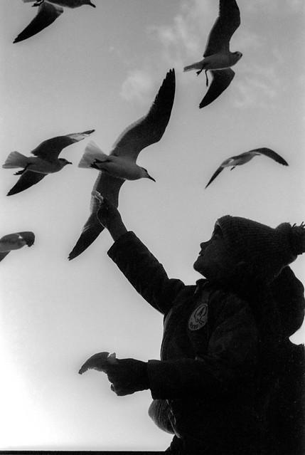 Chris feeding the Gulls