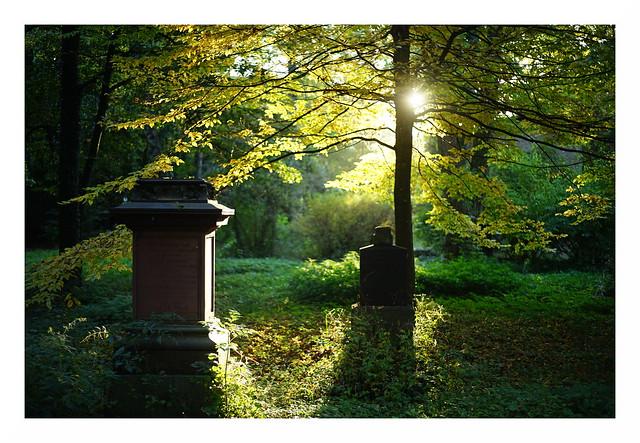 Herbstlicht im Alten Südfriedhof II