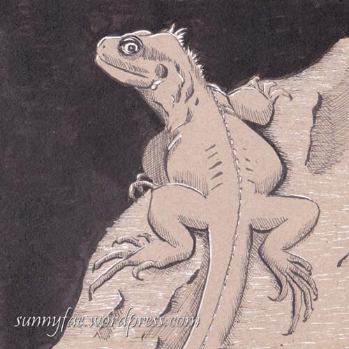 29 iguana 2