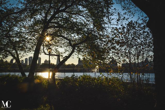 Central Park Fall 2019_WM-17