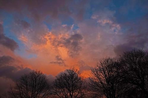 sunrise cullompton leat fields devon cloud orange blue tree trees sky ipm