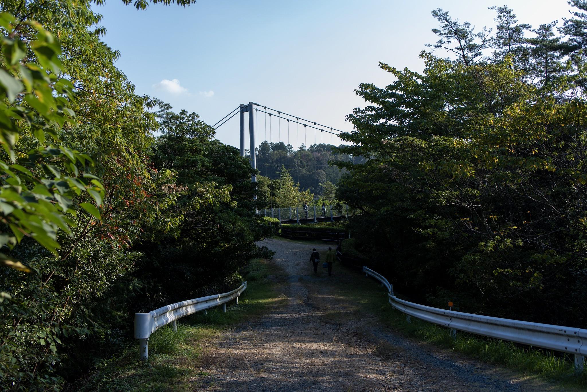 空の散歩道 @ 浜松 Nikon D810 + Tamron SP 35mm F1.8