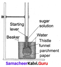 Samacheer Kalvi 10th Science Solutions Chapter 14 Transportation in Plants and Circulation in Animals 2