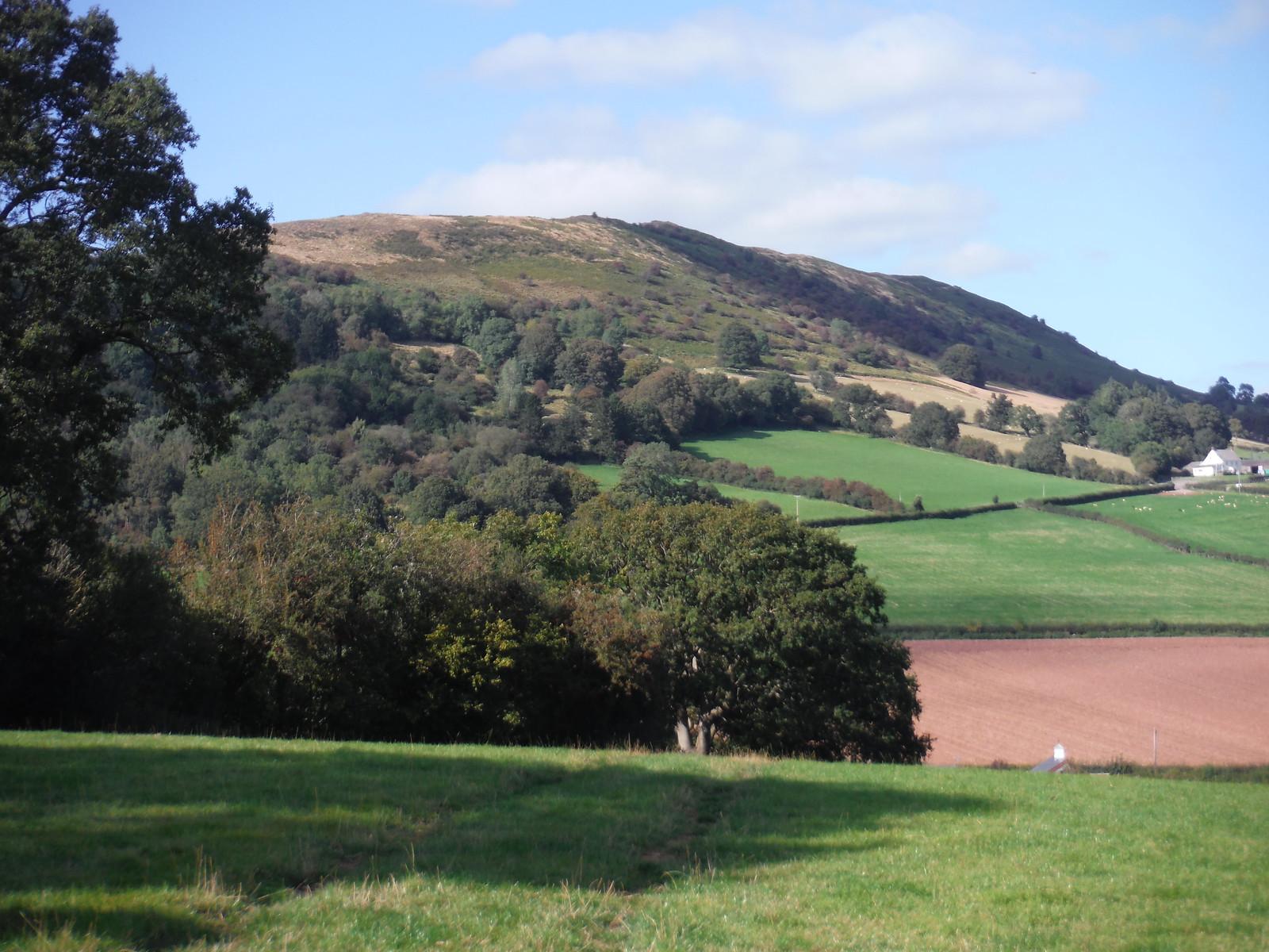 The Skirrid, from field in Bryn y Gwenin SWC Walk 347 - Llanvihangel Crucorney Circular (via Bryn Arw and The Skirrid)
