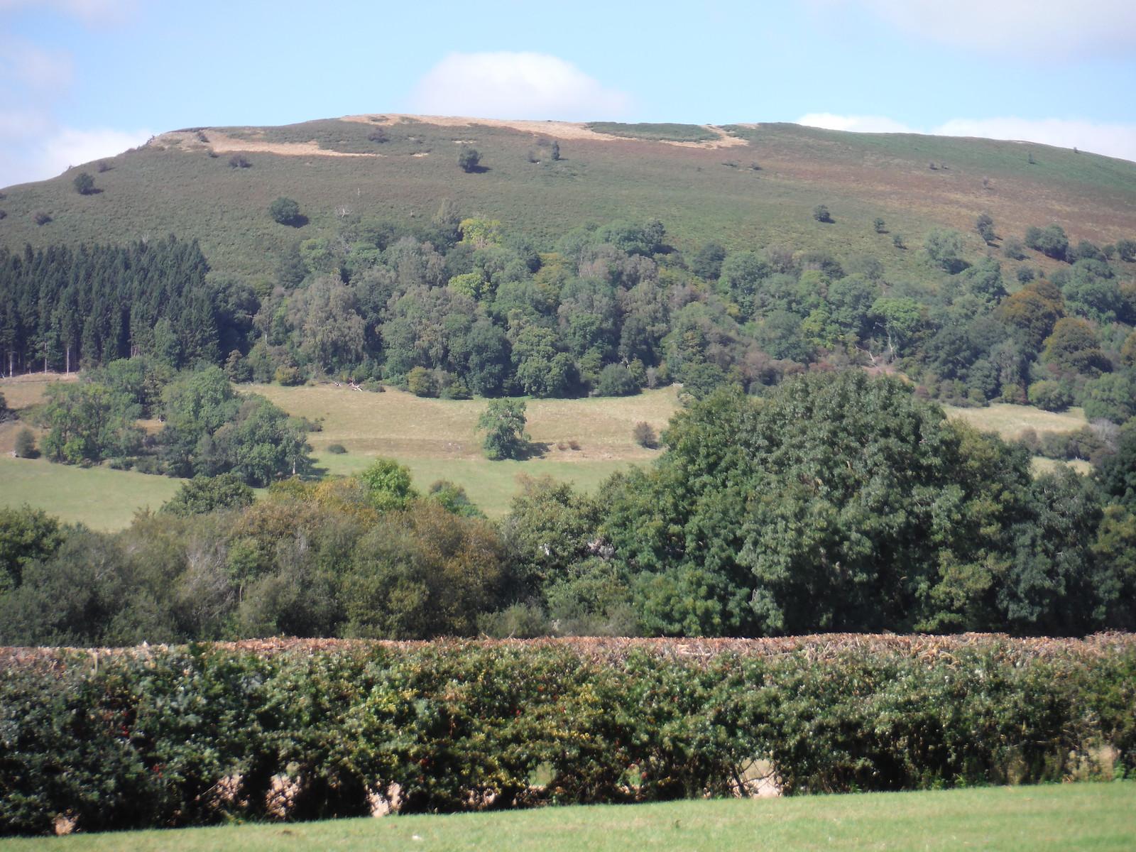 Backview from Gavenny Valley to Bryn Arw SWC Walk 347 - Llanvihangel Crucorney Circular (via Bryn Arw and The Skirrid)