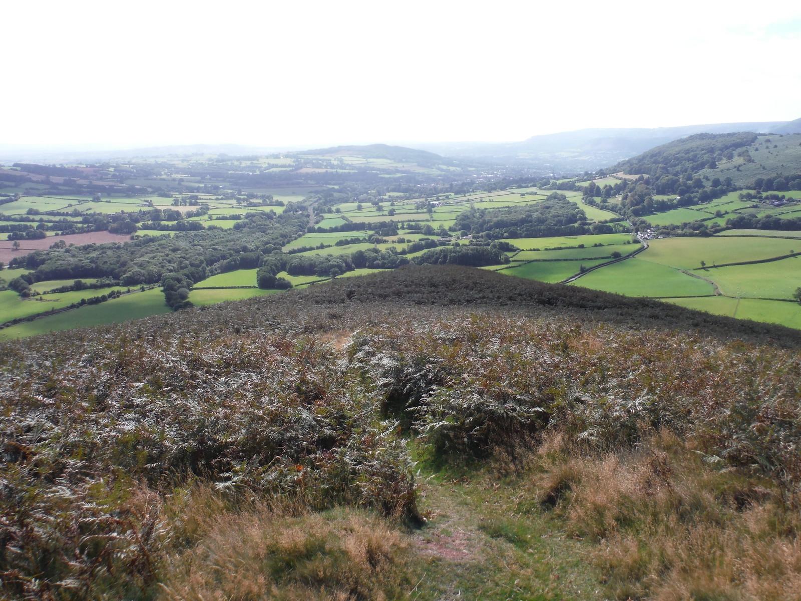 View down nose of ridge of Bryn Arw towards Abergavenny SWC Walk 347 - Llanvihangel Crucorney Circular (via Bryn Arw and The Skirrid)