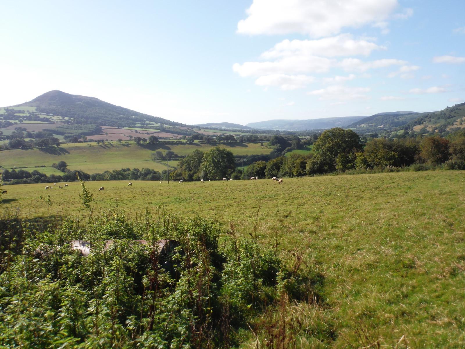 Ysgyryd Fawr and Fach, Mynydd y Garn-fawr, Blorenge, Deri SWC Walk 347 - Llanvihangel Crucorney Circular (via Bryn Arw and The Skirrid)