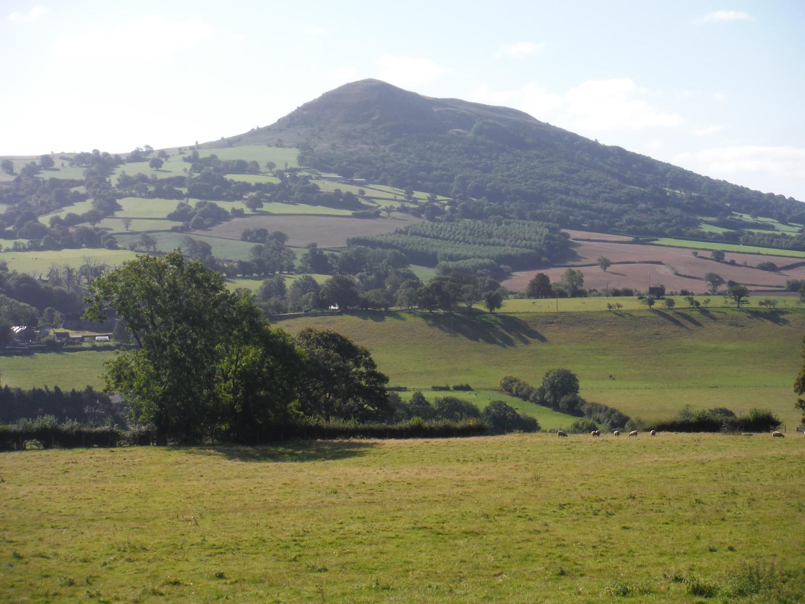 The Skirrid from ascent up Llwygy hill SWC Walk 347 - Llanvihangel Crucorney Circular (via Bryn Arw and The Skirrid)