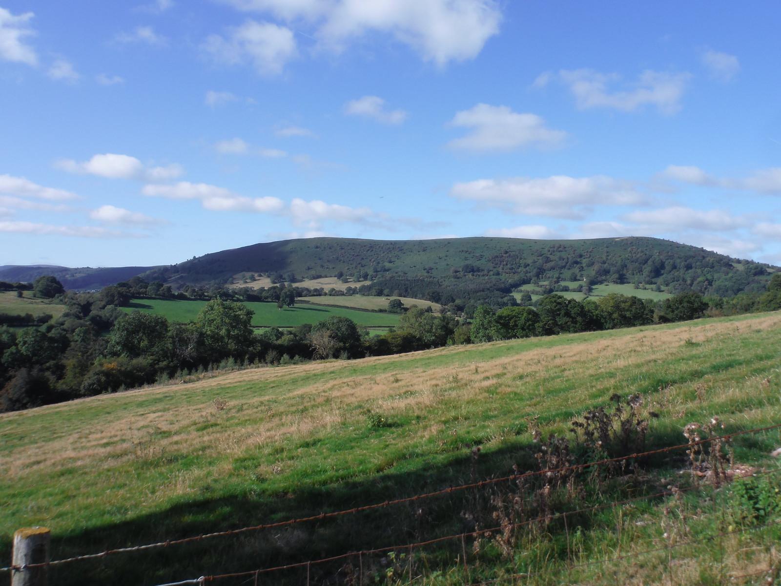 Bryn Arw from ascent up Llwygy hill SWC Walk 347 - Llanvihangel Crucorney Circular (via Bryn Arw and The Skirrid)